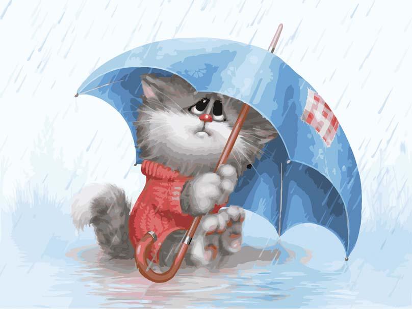 применению полной лето дождь картинки прикольные для ватсапа грозного