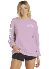 Толстовка BILLABONG White Wash SS18 Bubble Gum 3607869940255